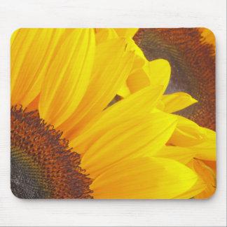 Sunflower Duet Mouse Pad