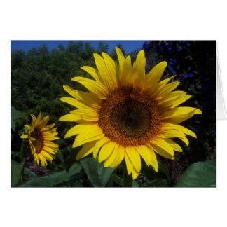 Sunflower Duo Notecard
