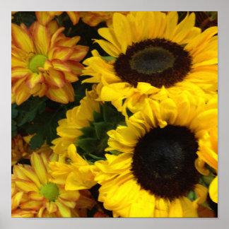 Sunflower Fall Flowers Poster