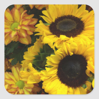 Sunflower Fall Flowers Square Sticker
