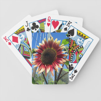 Sunflower Fence Deck of Cards