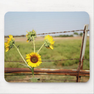 Sunflower fence mouse pad