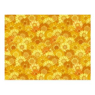 Sunflower Festival Postcard