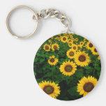 sunflower field basic round button keychain