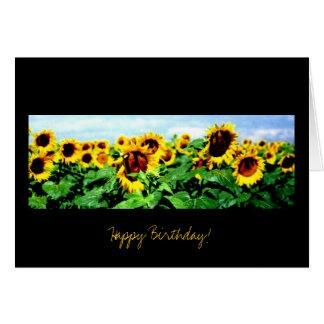 Sunflower field - Birthday Card