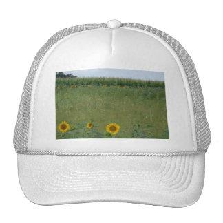 Sunflower Field Design Mesh Hats