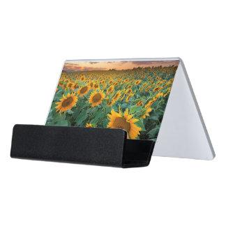 Sunflower Field in Longmont, Colorado Desk Business Card Holder