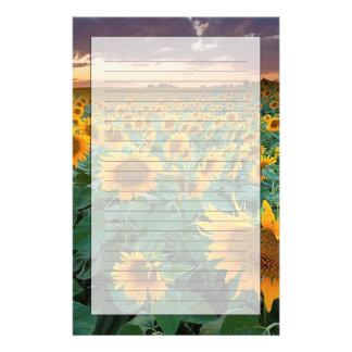 Sunflower Field in Longmont, Colorado Stationery