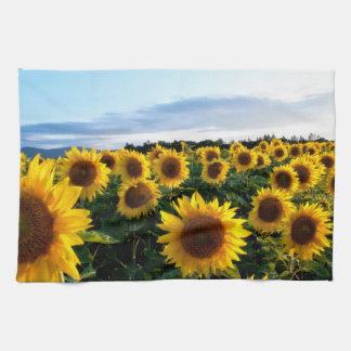 Sunflower Field Kitchen Towel