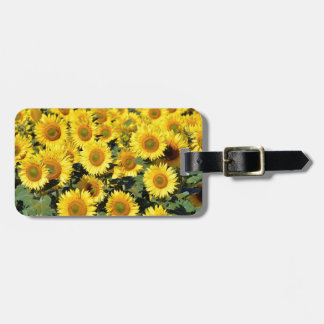 Sunflower field tags for bags