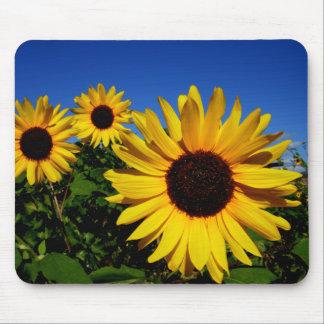Sunflower Field Mousepad