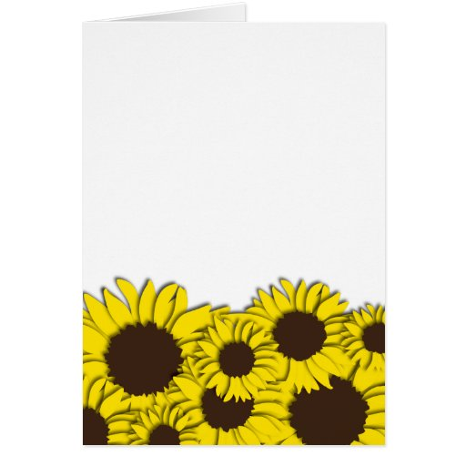 Sunflower Field Notecard Greeting Cards