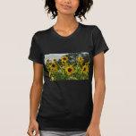 Sunflower Field Tee Shirt