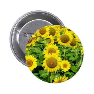Sunflower Fields 2 Inch Round Button