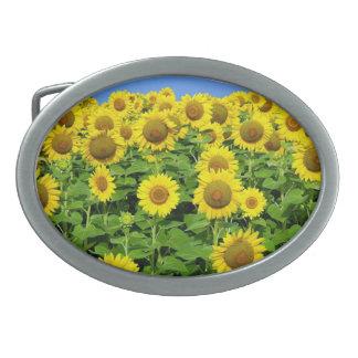 Sunflower Fields Belt Buckle