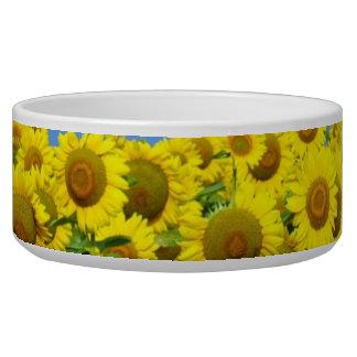 Sunflower Fields Bowl