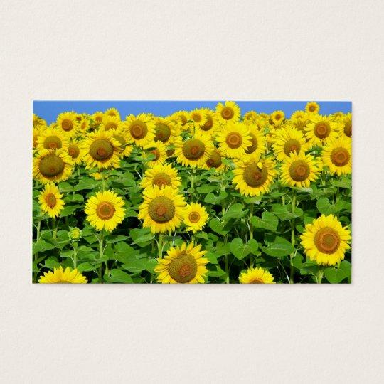 Sunflower Fields Business Card