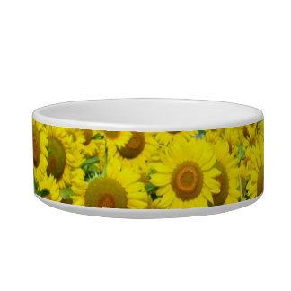Sunflower Fields Cat Bowls