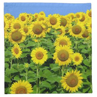 Sunflower Fields Cloth Napkins