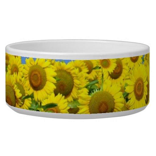 Sunflower Fields Dog Food Bowls