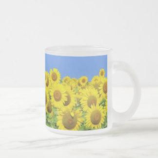 Sunflower Fields Frosted Glass Coffee Mug