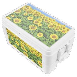 Sunflower Fields Igloo Chest Cooler