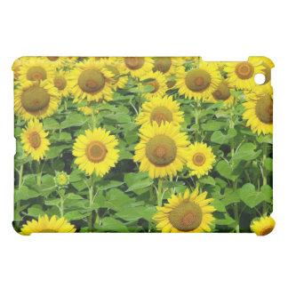 Sunflower Fields iPad Mini Cases