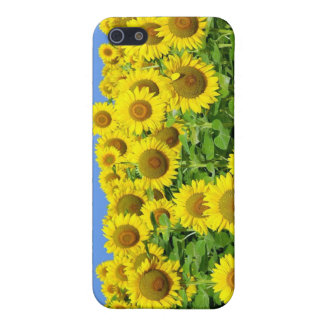 Sunflower Fields iPhone 5 Covers