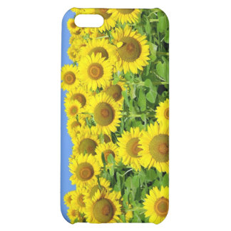 Sunflower Fields iPhone 5C Cases