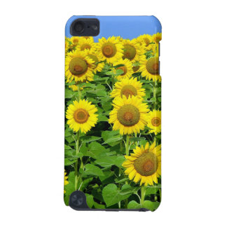 Sunflower Fields iPod Touch 5G Cases