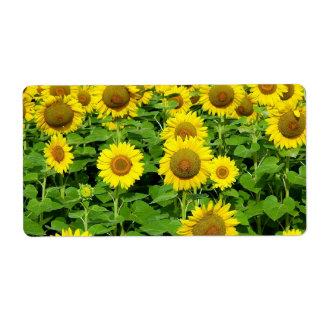 Sunflower Fields Label