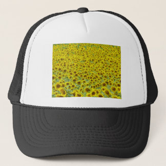 Sunflower fields Limousin Trucker Hat