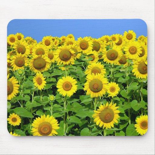 Sunflower Fields Mouse Mat