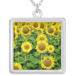 Sunflower Fields Pendant