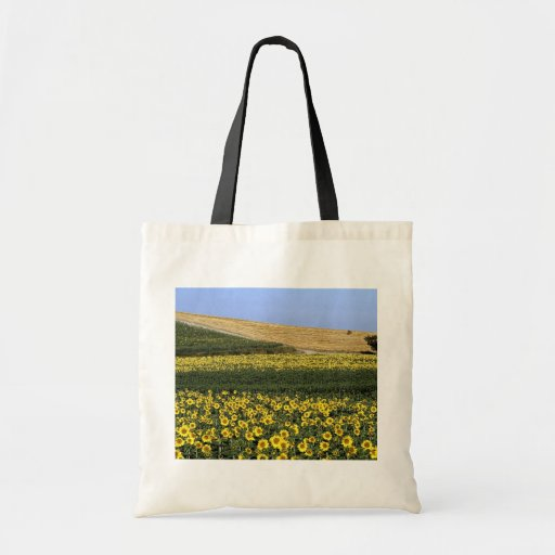 Sunflower fields, Tuscany, Italy Canvas Bags