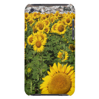 Sunflower fields, white hill town of Bornos Case-Mate iPod Touch Case