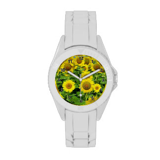 Sunflower Fields Wristwatches