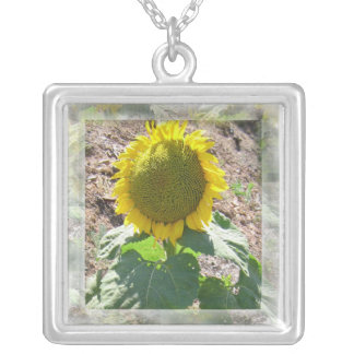 Sunflower Floral framed Nature Botanical Photo Silver Plated Necklace