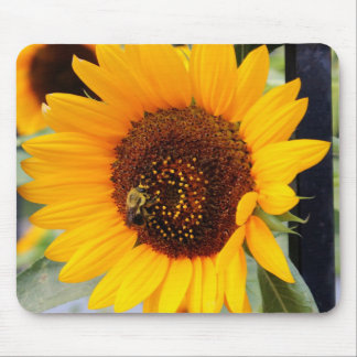 Sunflower Floral Photo Mousepads
