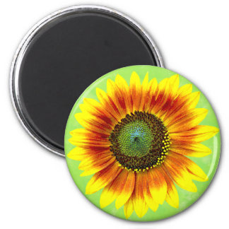 Sunflower Floral Yellow and Green Flower Garden Magnet