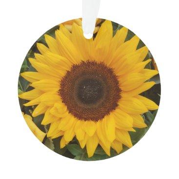 Beach Themed Sunflower Flower Floral Photography Ornament