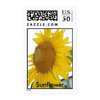 Sunflower flower photography postage stamps