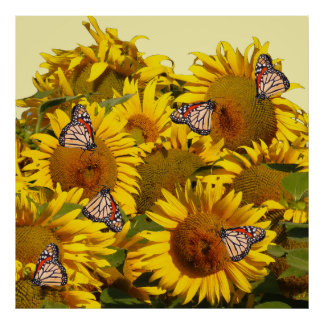 Sunflower Flowers Monarch Butterflies Floral Print
