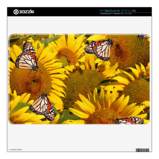 Sunflower Flowers Monarch Butterfly Floral Gardene Decals For MacBook