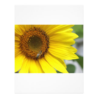 Sunflower Custom Flyer