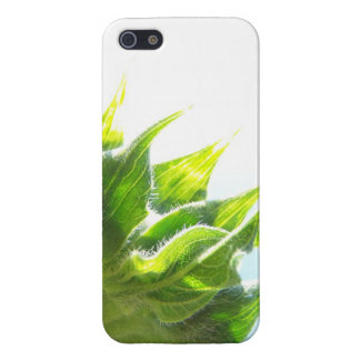 Sunflower for iPhone 5/5S iPhone 5 Case