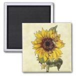 Sunflower Fridge Magnets