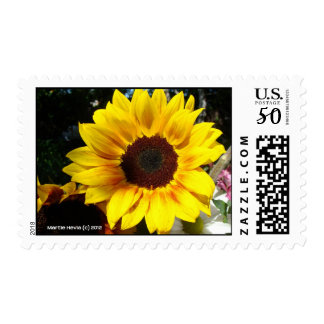 Sunflower & Friends Bouquet Postage