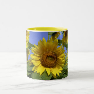 Sunflower from Provence Coffee Mug
