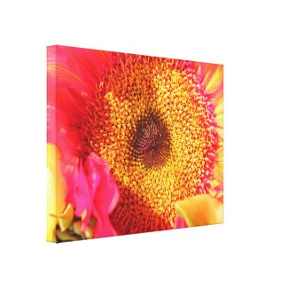 Sunflower Gallery Wrapped Canvas